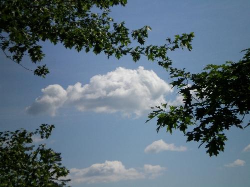 cloudbeherenow